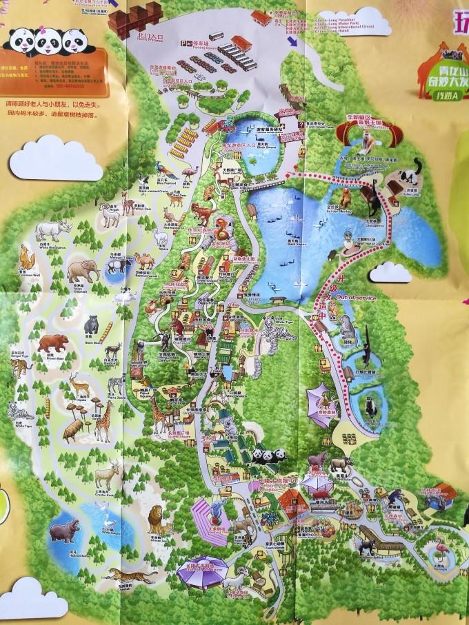 今天在长隆野生动物园游玩后