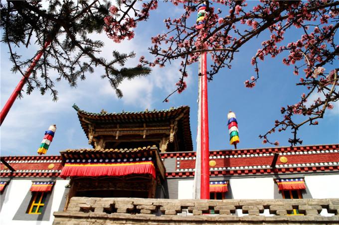 治愈之旅:青海湖,西宁塔尔寺