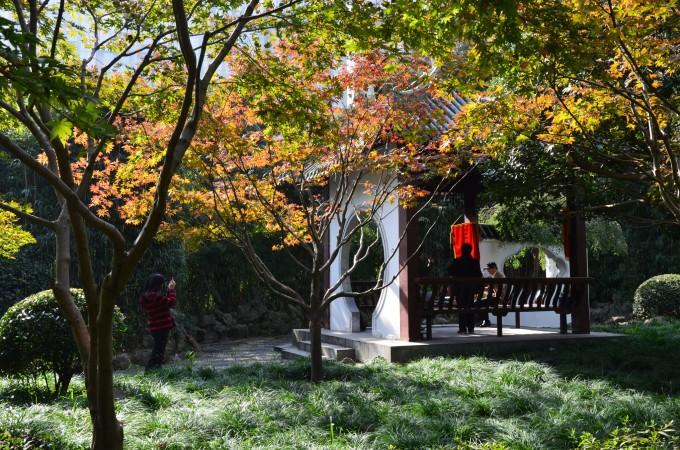 提到中山公园,可能很多人第一反应是购物,龙之梦啊,玫瑰坊啊,巴黎春天啊,苏宁,国美,等等,这里可以算是购物天堂。 这里是个商圈,但其实这里真的是有个公园。 最近上海一直下雨,难得周末有一天晴天,决定出发去公园赏秋。 和朋友也约在龙之梦一起吃饭,一切安排的都是那么合适。 一路沿着愚园路前行,路两边的树叶子都枯了,搭配两边建筑物特别的历史感,走起来特别舒服。 去中山公园很方便,地铁二,三,四号线。公交车我知道的,有13路,941路,54路,20路,921路,等等