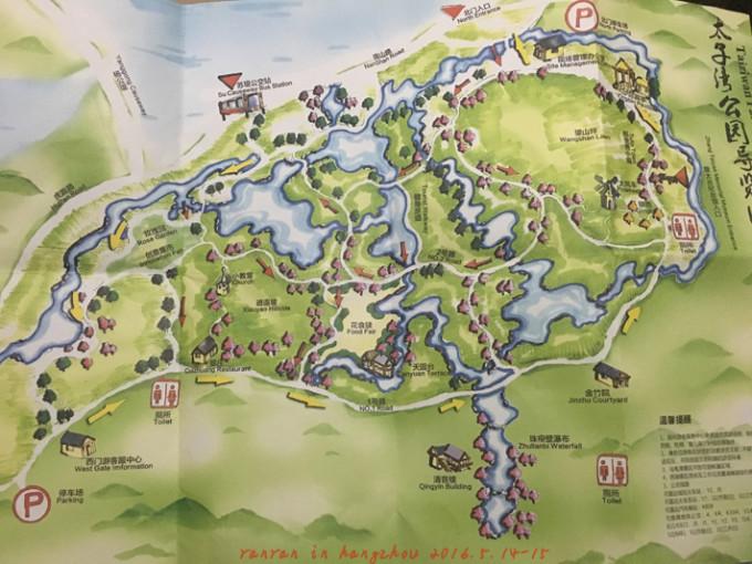 人间五月天——带妈妈周末漫游杭州西湖